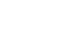 State of Florida Division of Cultural Affairs